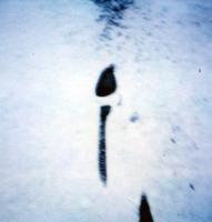http://www.danjec.com/files/gimgs/th-15_15_january-snow.jpg